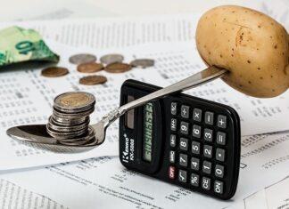 domowy budżet